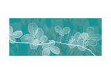 Teal Xray 4 Premium Giclee Print by Albert Koetsier