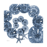 Sand Dollar Blues Premium Giclee Print by Albert Koetsier
