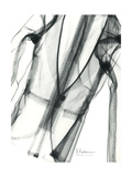 Editorial X-Ray Jacket Premium Giclee Print by Albert Koetsier