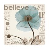 Iceland Poppy Believe Premium Giclee Print by Albert Koetsier