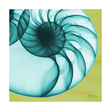 Neon Nautilus Premium Giclee Print by Albert Koetsier