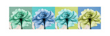 Blue Green Flowers 1 Premium Giclee Print by Albert Koetsier