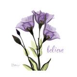 Believe Gentian Premium Giclee Print by Albert Koetsier