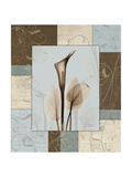 Calla Blue Brown 1 Premium Giclee Print by Albert Koetsier