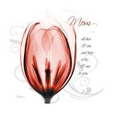 Tulip Head Mom Premium Giclee Print by Albert Koetsier