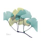 Gingko Premium Giclee Print by Albert Koetsier