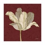 Chianti Behind Tulip Print by Diane Stimson