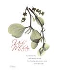 Xmas Mistletoe Premium Giclee Print by Albert Koetsier