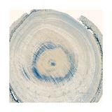 Mineral Rings 6 Premium Giclee Print by Albert Koetsier
