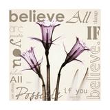 Daffodil Believe Premium Giclee Print by Albert Koetsier