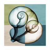 Aqua Filter 2 Premium Giclee Print by Albert Koetsier
