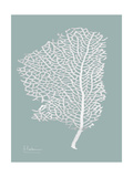 Sea Fan 2 Premium Giclee Print by Albert Koetsier