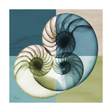Aqua Filter 4 Premium Giclee Print by Albert Koetsier