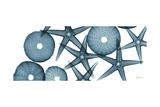 Starfish 2 Premium Giclee Print by Albert Koetsier