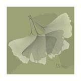 Green Leaf Square 6 Premium Giclee Print by Albert Koetsier