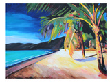 Magens Bay St Thomas Usvi Posters by M Bleichner