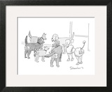 A group of dogs in a circle; they all have nametags attached to their rear… - New Yorker Cartoon Art Print by Danny Shanahan