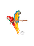 Uccelli Stampe di Gina Maher
