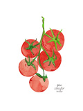 Tomatoes Prints by Gina Maher