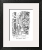 """""""It's good to know about trees.  Just remember nobody ever made any big mo…"""" - New Yorker Cartoon Wall Art by Charles Saxon"""