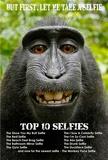 Monkey Selfie Plakat