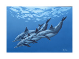 Swimming with the Dolphins Giclee Print by  Apollo