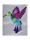 hummingbird Giclee Print by  Artpoptart