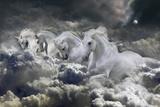 Fantasy Horses 24 Stampa fotografica di Bob Langrish