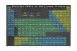 Periodic Table Giclee Print by Ali Potman