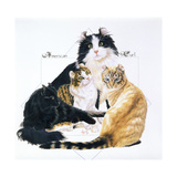 American Curl Giclee Print by Barbara Keith