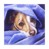 Cold Me Giclee Print by Barbara Keith
