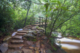 Stone Steps to a Bridge Photographic Print by Bob Rouse