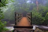 Wooden Bridge 3 Photographic Print by Bob Rouse