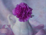 One Pink Carnation Photographic Print by Bob Rouse