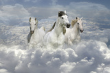 Fantasy Horses 41 Photographic Print by Bob Langrish
