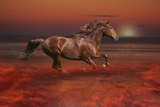 Fantasy Horses 43 Photographic Print by Bob Langrish