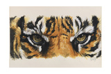 Eye-Catching Tiger Giclee Print by Barbara Keith