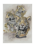 Jaguars Giclee Print by Barbara Keith
