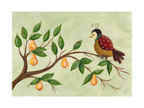 Partridge in a Pear Tree Giclee Print by Beverly Johnston