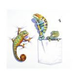 Lizards Giclee Print