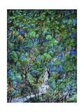 Cascada Lámina giclée por Bill Bell