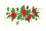 Hibiscus Hummer Giclee Print