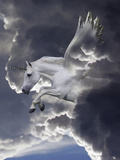 Unicorn 62 Photographic Print by Bob Langrish