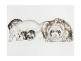 Family of Ferrets Giclee Print by Barbara Keith