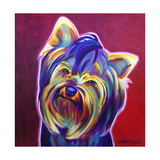 Yorkie - Furbie Face Reproduction procédé giclée par  Dawgart