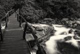 Chimney Tops Bridge BW Photographic Print by Bob Rouse
