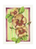Pansies Giclee Print by Deborah Kopka