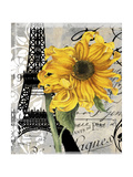 Paris Blanc Giclee Print by Color Bakery
