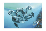 Dolphins Giclee Print by Durwood Coffey