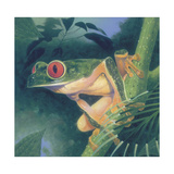 Tree Frog Giclee Print by Durwood Coffey